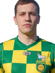 Rimvydas Lipnevičius